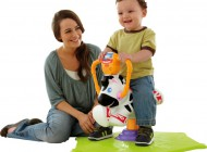Fisher Price Bounce 'N Spin Zebra
