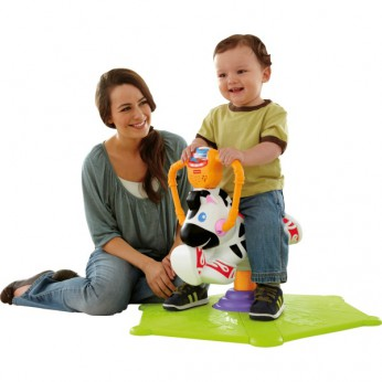 Fisher Price Bounce 'N Spin Zebra reviews