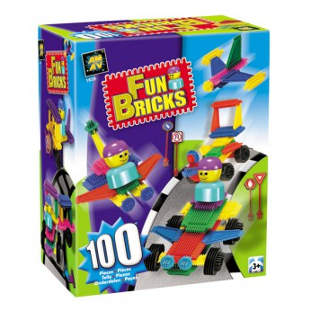 100 Piece Fun Bricks Box reviews