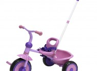 Pink and Purple Trike