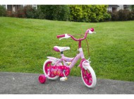 12 inch Angel Bike