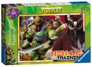 Teenage Mutant Ninja Turtles 35pc