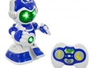 Remote Fun Robot