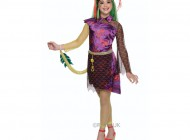 Monster High Jinfire Long Costume