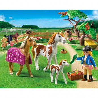 Playmobil Paddock with Horses and Foal 5227 reviews