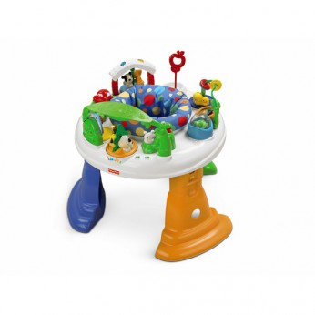 Fisher Price Twirlin Whirlin Entertainer reviews